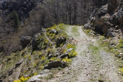 Monte Perre -  Croce di Dio sia lodato